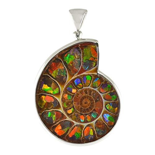 (Starborn Sterling Silver Ammonite with Ammolite Inlay Pendant )