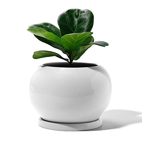 Potey Planter Ceramic Plant Flow...