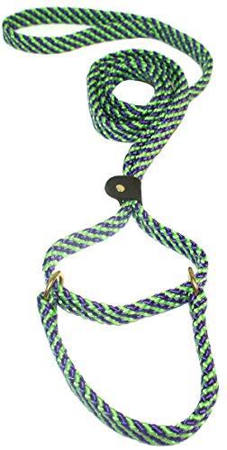- Lone Wolf 5/8 x 6' Flat Braid Martingale Leash Lime Green/Purple Spiral