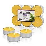 Candle Charisma Votive Citronella Candles