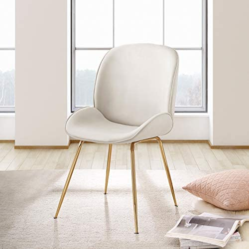 Thin Ant Comfy Dining Chairs