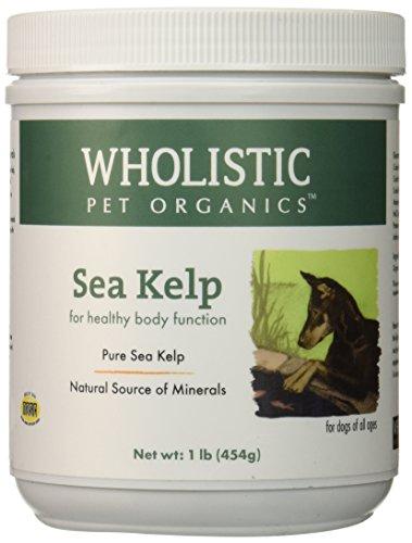 Wholistic Pet Organics Sea Kelp Supplement, 1 lb