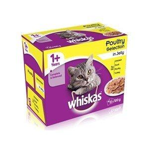 Whiskas 1+ - Selección de aves de corral en gelatina (4 x 12 x