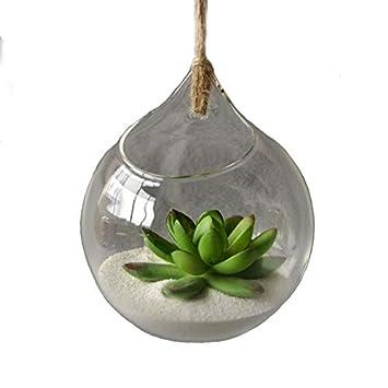 8ee4bec62 Cupcinu - Bola colgante de cristal para plantas, terrario, velas de té,  flores, jarrón, bolas, maceta, contenedor, ...
