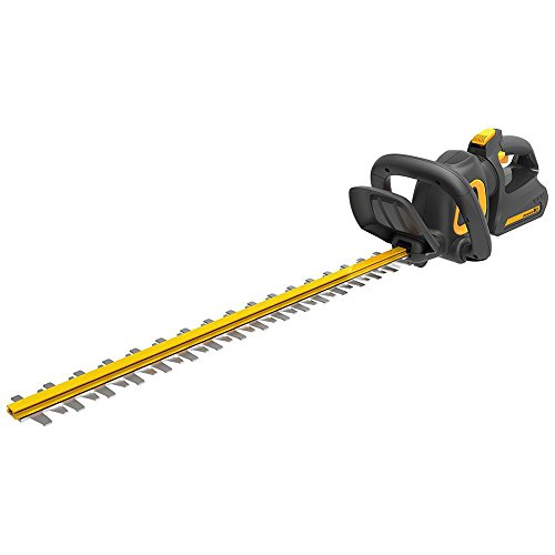 Poulan Pro 967044601 40V Dual Steel Hedge Trimmer, 24'