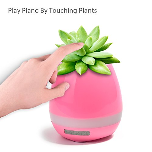 Wireless Garden Speaker Light