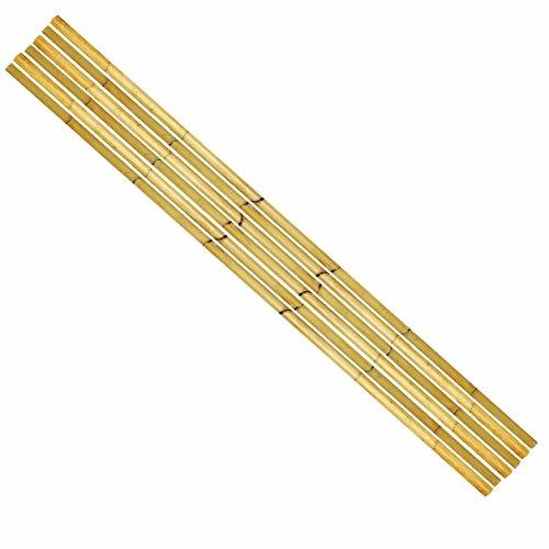 BambooMN 93