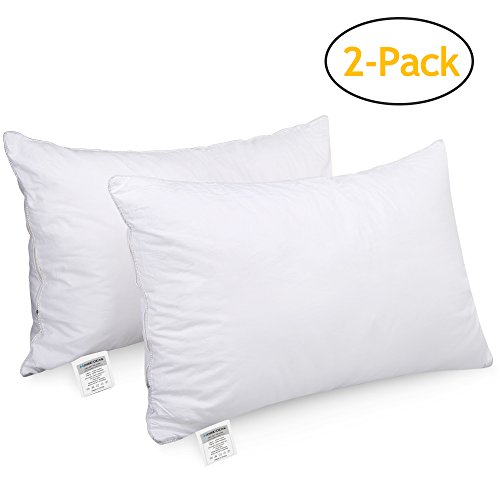 HOMEIDEAS Bed Pillows Sleeping - (2 Pack Queen Size) - Super Soft Down-Alternative Luxury Hotel Pillows, Dust Mite Resistant & Hypoallergenic, NO FLAT! -