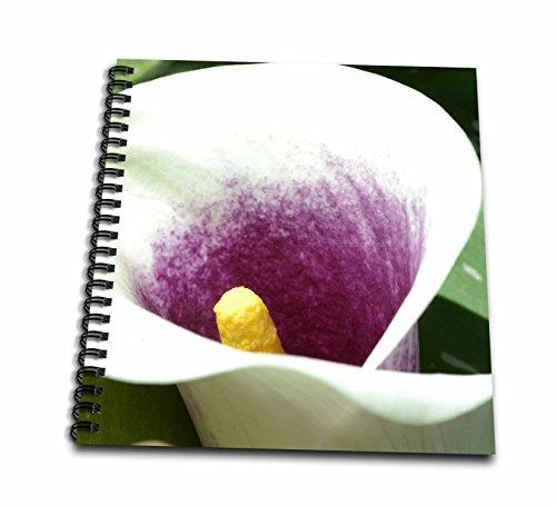 3dRose db_23569_2 White and Purple Calla Lily Memory Book, 12 by 12-Inch Calla Lily Lily Photo Album