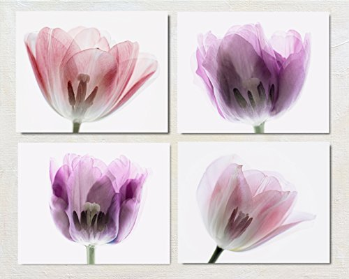 Pink and Purple Flower Photography Set of Four Prints, X-Ray Tulip Artwork Collection