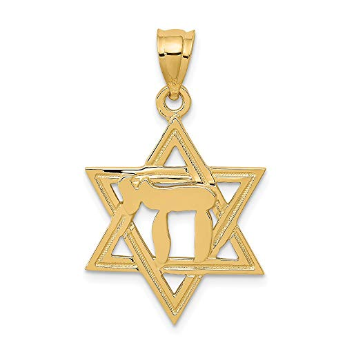 (14k Yellow Gold Solid Polish Chai In Jewish Jewelry Star Of David Pendant Charm Necklace Religious Judaica Fine Jewelry Gifts For Women For Her)