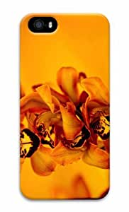 iPhone 5 3D Hard Case The Best Part Of My Losing Streak by supermalls