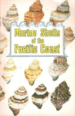 Pacific Shells - Marine Shells of the Pacific Coast