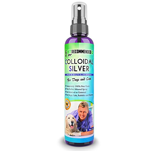 Vet Recommended - Colloidal Silver For Dogs & Cats - Colloidal Silver Spray That Works as Natural Hot Spot Treatment For Dogs - Use on Cuts, Wounds, Burns, Flea & Insect Bites. Non-Toxic.