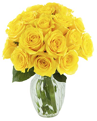KaBloom Bouquet of 18 Fresh Yellow Roses (Farm-Fresh, Long-Stem) with Vase
