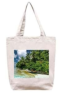 Palmera Laguna–algodón Canvas Tote Bag
