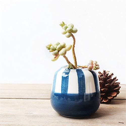 all Green Azure Color Hand-Painted Blue Vertical Stripes Thumb Flower Pot, Small Table Plant Stand Plant Holder Indoor Outdoor Cactus Succulents, with Drainage Holes,2.4Inch ()