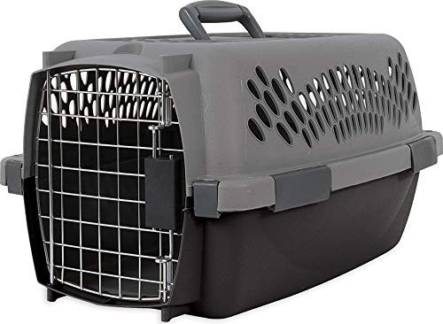 Aspen Pet Porter Heavy-Duty Pet Carrier,Light...