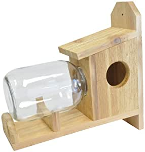 Backyard Boys Woodworking BBW8 Squirrel Under Glass Feeder