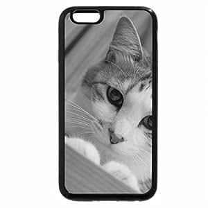 iPhone 6S Plus Case, iPhone 6 Plus Case (Black & White) - Cute lookin cat