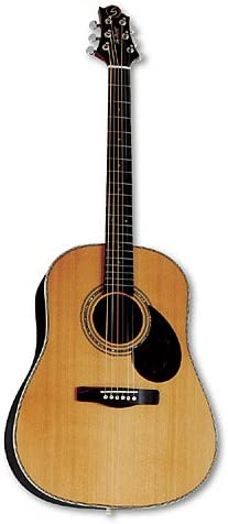 Greg Bennett Carolina SJ-14 - Guitarra acústica: Amazon.es ...
