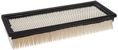 Purolator A14349 Classic Air Filter
