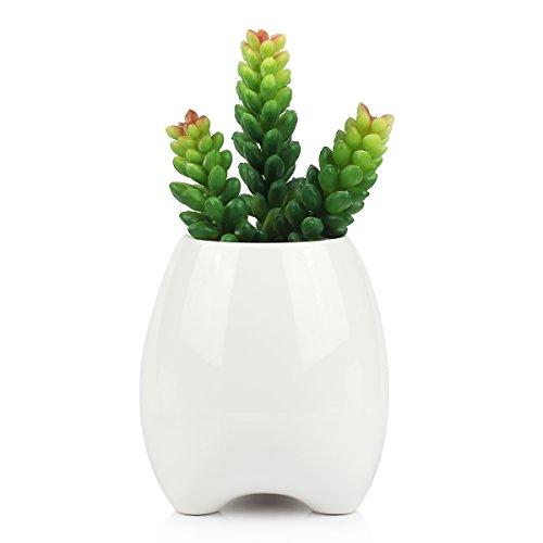 celestte-succulent-planter-pot-cute-teeth-white-mini-ceramic-plant-flower-pot-succulent-planter-tall