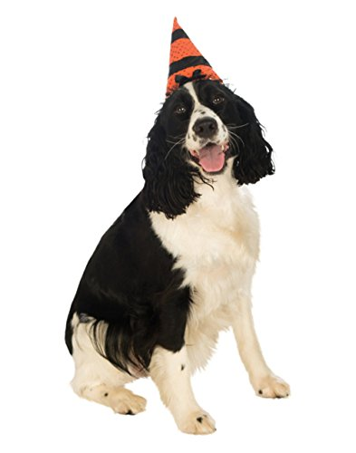 Pet Witch - Rubie's Pet Witch Hat, Small to Medium, Orange and Black