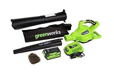 Greenworks 24322 Cordless Leaf Blower Vacuum, Digipro G-MAX 40V (Complete Set) w/Bonus: Premium Microfiber Cleaner Bundle