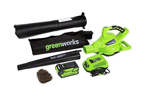 24322 cordless leaf blower vacuum