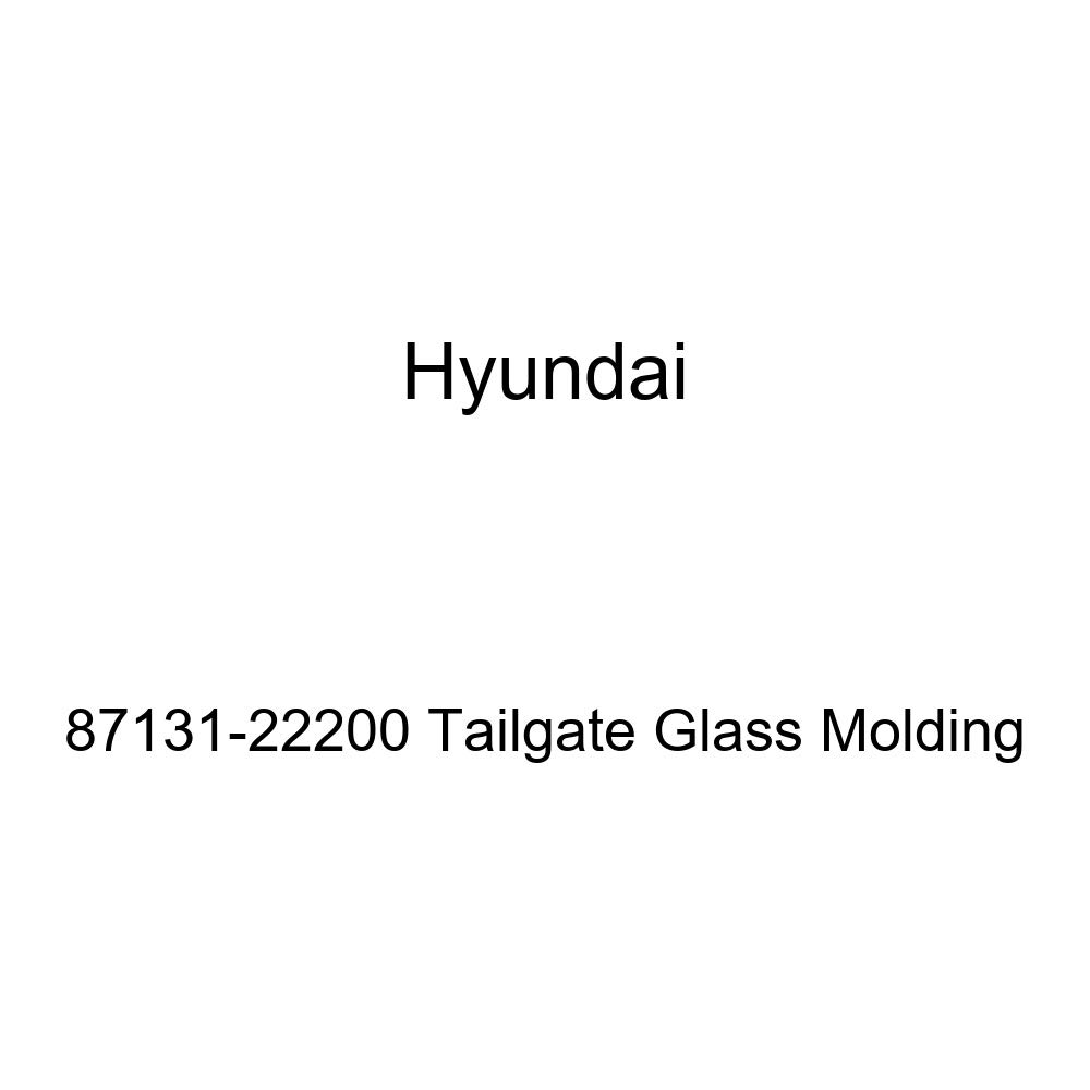 Genuine Hyundai 87131-22200 Tailgate Glass Molding