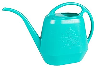 Bloem Aqua Rite Watering Can, 56 oz, Calypso (AW21-27)