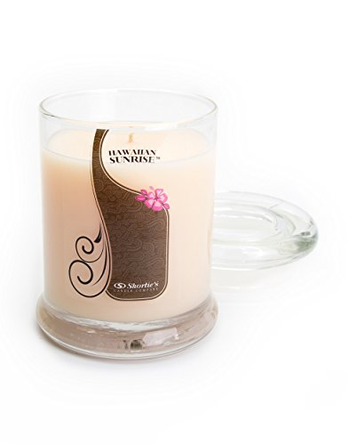 Hawaiian Sunrise Candle - Small Orange 6.5 Oz. Highly Scented Jar Candle - Made with Natural Oils - Fresh & Clean Collection