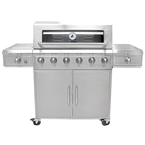 3 Embers 6 Burner Stainless Steel Dual Fuel Propane Gas Grill Uncategorized