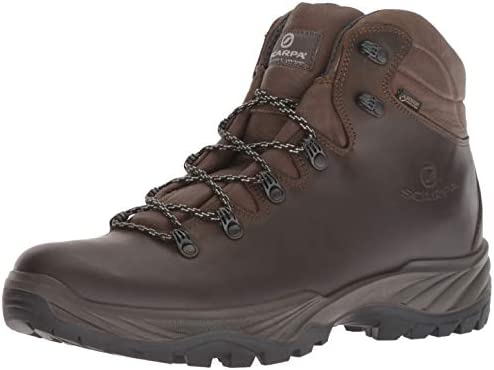 SCARPA Men s Terra GTX Walking Shoe