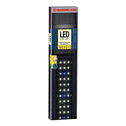 Led Light Marineland in US - 3