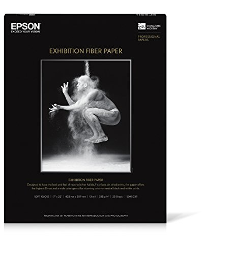 (Epson Exhibition Fiber Glossy Inkjet Photo Paper 17