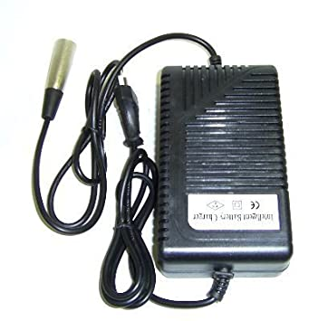 Cargador Electrico inteligente 36v Conector raycool ...