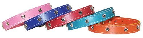OmniPet Signature Leather Dog Collar with Paw Ornaments, Mandarin, 26