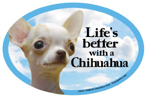 Better Life Chihuahua (Tan) Oval Dog Magnet for Cars
