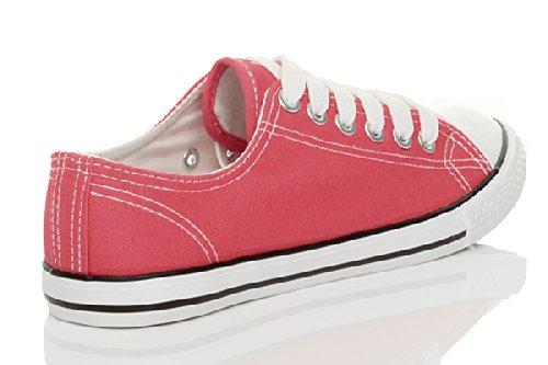 LOW CANVAS SPORTLICHE GRÖSSE TRAINER TOP SPITZEN PUMPSCHUHE Candy FRAUEN Pink FLACHE DAMEN MÄDCHEN Coral ZqHEE0