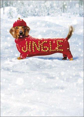 Jingle Dog Avanti Dachshund Christmas