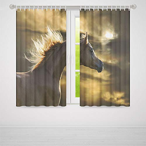 (TecBillion Window Curtains Blackout,Horse Decor,for Bedroom Living Dining Room Kids Youth Room,Chestnut Horse Profile on Dramatic Cloudy Sunset Sky Strong Wild Young Mammal Decorative,37Wx51L Inches)