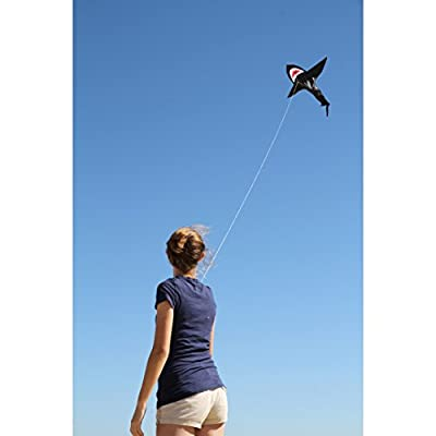HQ Kites Flying Creatures Shark - 43 Inch Single - Line Kite  - Active Outdoor Fun for Ages 5 and Up: Toys & Games