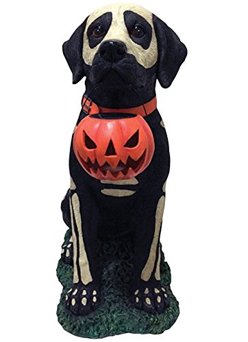 Painted Skeleton Dog (Painted Dogs Halloween)