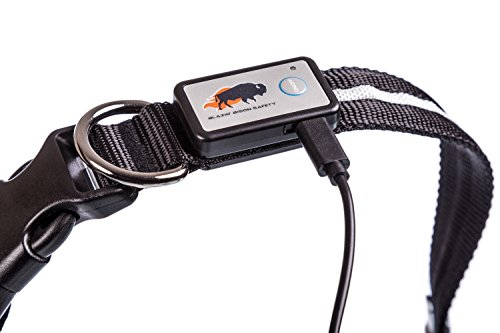 Pictures of Blazin' Safety LED Dog Collar – USB Black XSmall 3