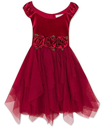 Rare Editions Toddler Girls Rose-Trim Velvet Dress (Red, 2T)