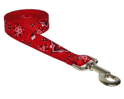 Sassy Dog Wear 6-Feet Red Bandana Dog Leash, Medium