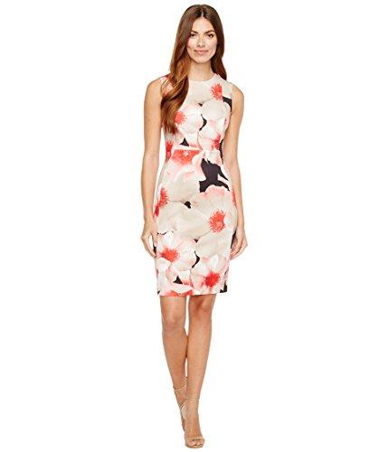 私達キラウエア山スパイ[カルバンクライン] Calvin Klein レディース Floral Print Sheath Dress ドレス [並行輸入品]