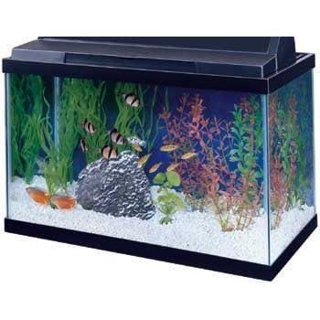 All glass aquarium aag10015 tank black 15 for 10 gallon fish tank hood